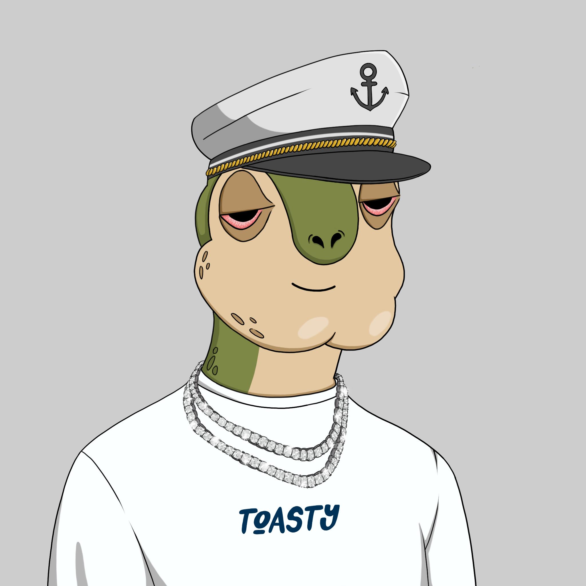 Toasy Turts #0437